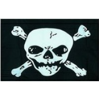 Pirate Flag - Large