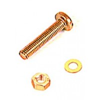 M8 x 40mm Pan Head Brass Machine Screw 2 Pack